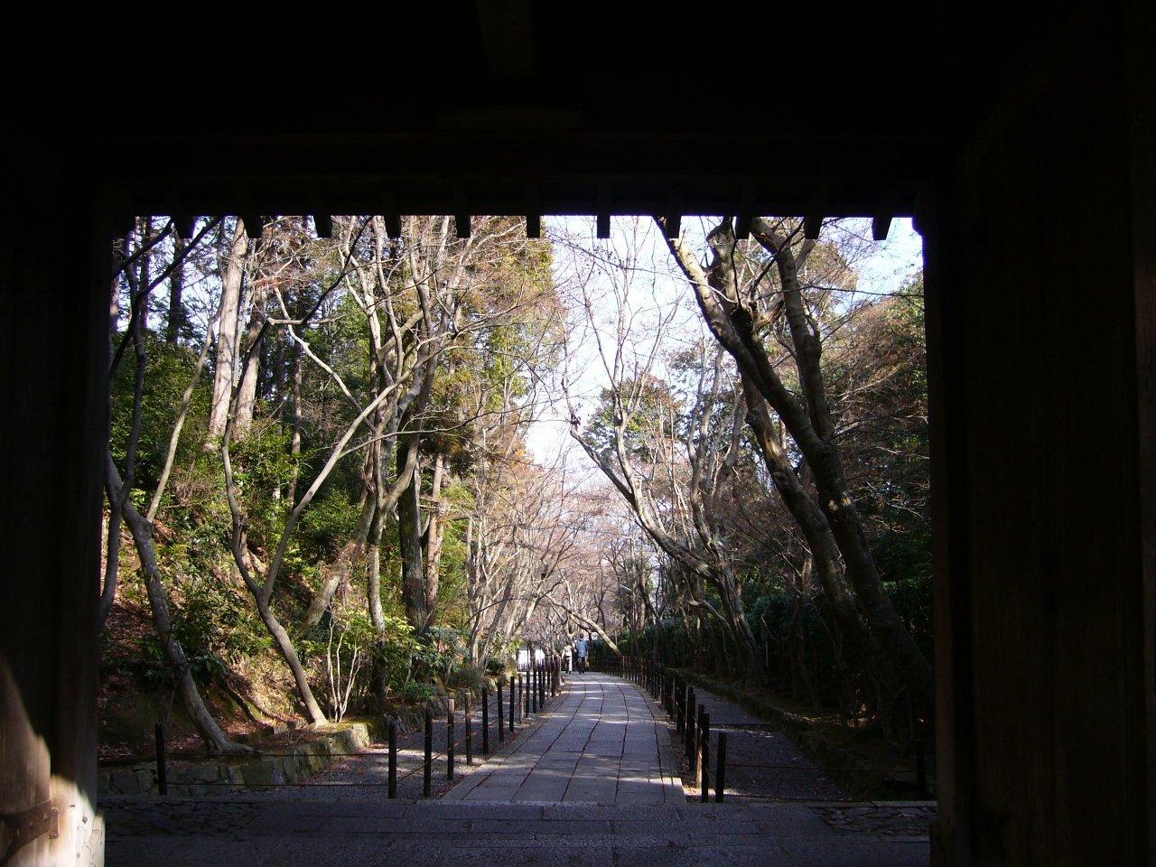 報国山 光明寺(その2)_c0112559_08292172.jpg