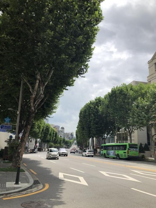 夏のソウルに到着♩_b0060363_13322720.jpeg