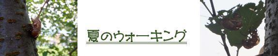 f0231708_18420818.jpg
