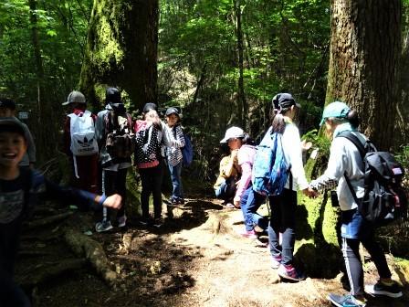 自然観察案内(森林教室) 豊川市立御油小学校_d0105723_21043032.jpg