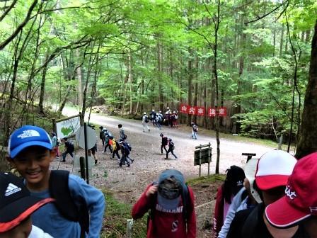 自然観察案内(森林教室) 豊川市立御油小学校_d0105723_21050623.jpg