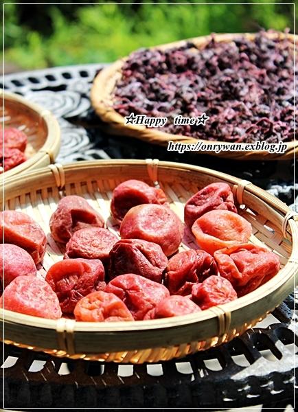 OLさんへ、鮭と枝豆のおむすび弁当と土用干し2日目♪_f0348032_16231154.jpg