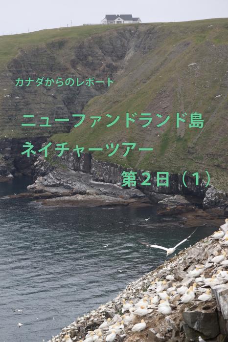 b0144049_08350192.jpg