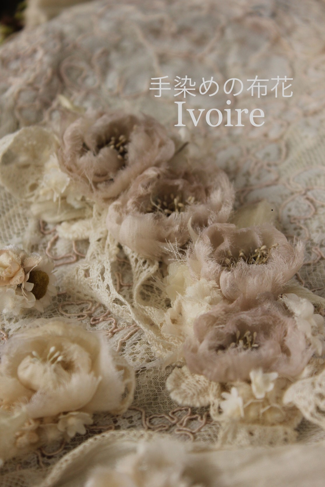 ivory色の小花...♪*゚_f0372557_10210028.jpeg