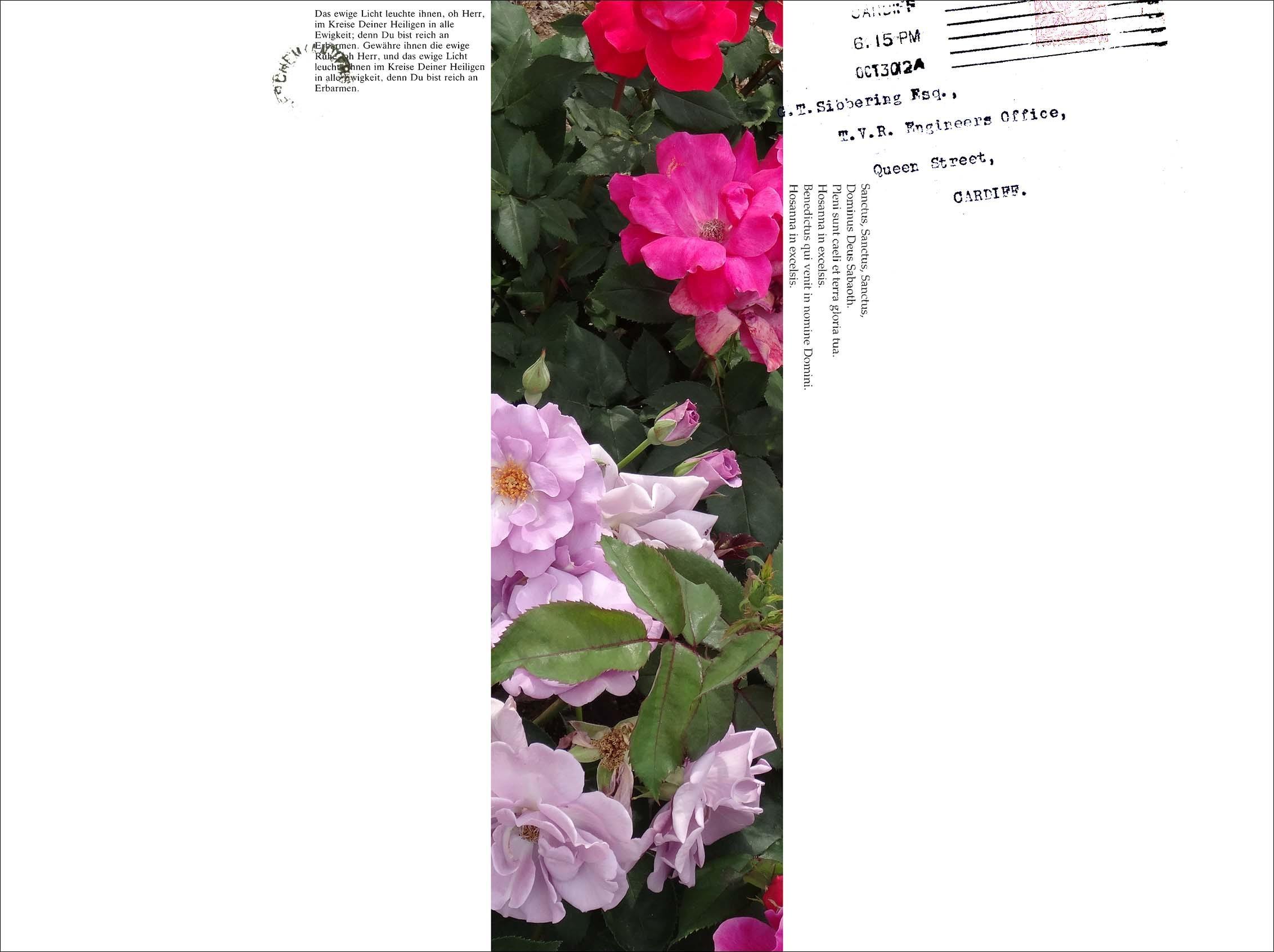 f0198771_23593385.jpg