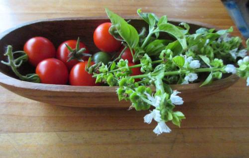 トマト、トマト、トマト. . . 。_e0341401_04501030.jpg