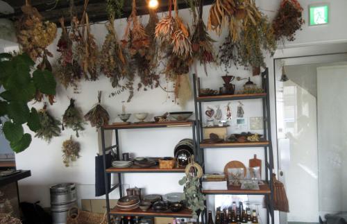 初めて入ったカフェは、植物だらけ。_e0341401_08012245.jpg