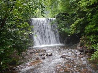 「樹林の山旅」の樹林を目指して…温見川支流赤谷_c0359615_22322060.jpg