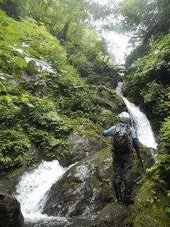 「樹林の山旅」の樹林を目指して…温見川支流赤谷_c0359615_22334093.jpg