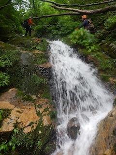 「樹林の山旅」の樹林を目指して…温見川支流赤谷_c0359615_22341826.jpg
