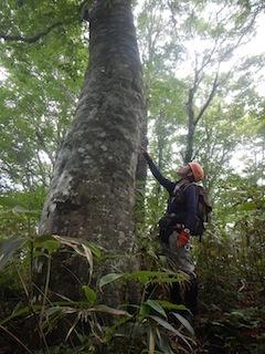 「樹林の山旅」の樹林を目指して…温見川支流赤谷_c0359615_22351304.jpg