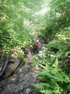 「樹林の山旅」の樹林を目指して…温見川支流赤谷_c0359615_22352874.jpg