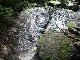 「樹林の山旅」の樹林を目指して…温見川支流赤谷_c0359615_22354135.jpg