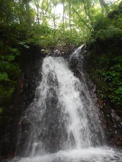 「樹林の山旅」の樹林を目指して…温見川支流赤谷_c0359615_22360416.jpg