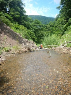 「樹林の山旅」の樹林を目指して…温見川支流赤谷_c0359615_22361197.jpg