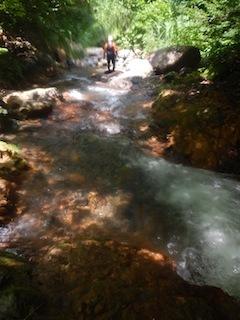 「樹林の山旅」の樹林を目指して…温見川支流赤谷_c0359615_22361920.jpg