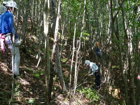 みんなの森活動日記_d0105723_18462233.jpg