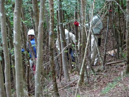 みんなの森活動日記_d0105723_18463598.jpg