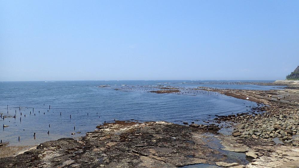 オーパL3ボート釣り 5回目。 2019年7月31日(水)_d0171823_21300004.jpg