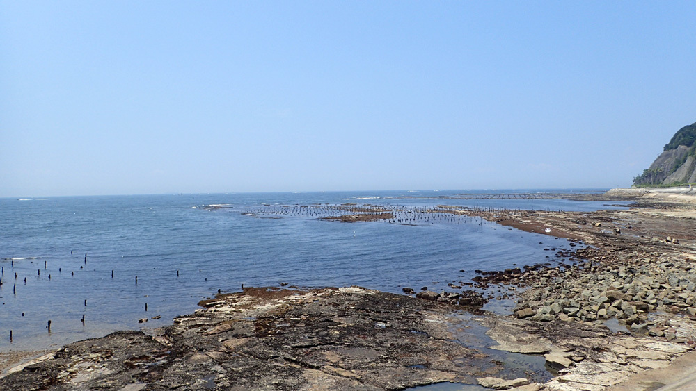 オーパL3ボート釣り 5回目。 2019年7月31日(水)_d0171823_21301993.jpg