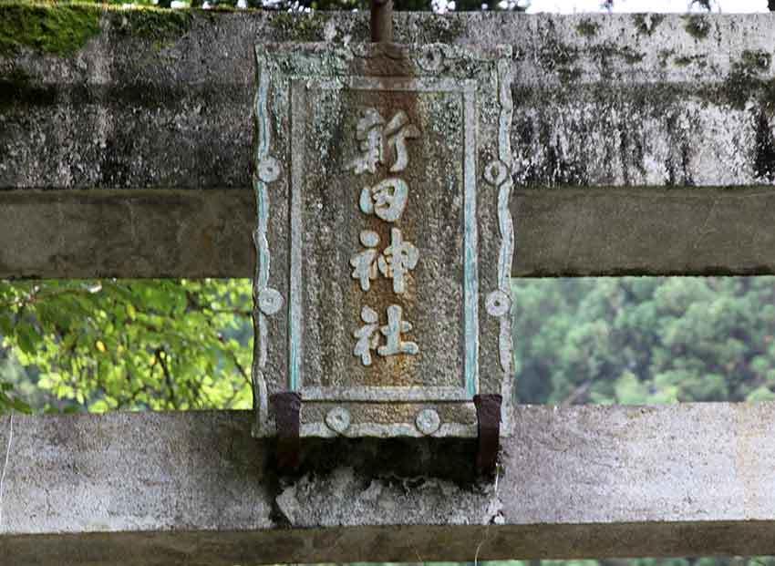 d0058941_20101074.jpg