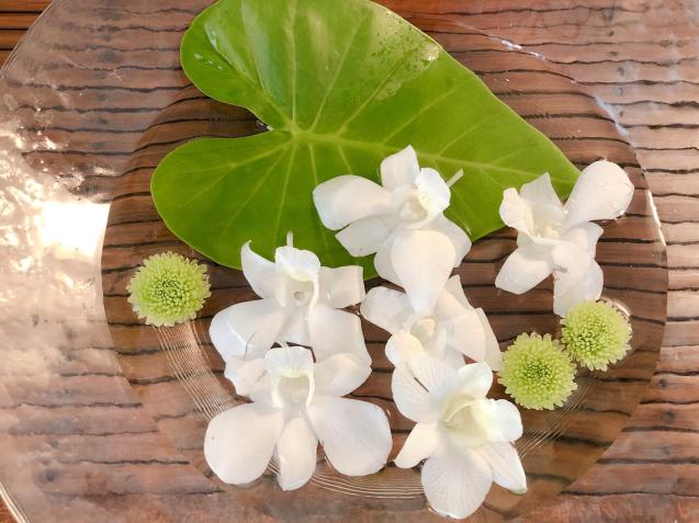 8月のサララ空き状況とかわいいお花たち_f0140145_12030861.jpg