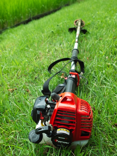 草刈り機とチェンソー・・・電柱とソラ_d0005250_2013225.jpg