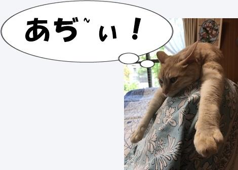 日本一の暑かった町の隣でスマホの勉強_a0331562_16270368.jpg