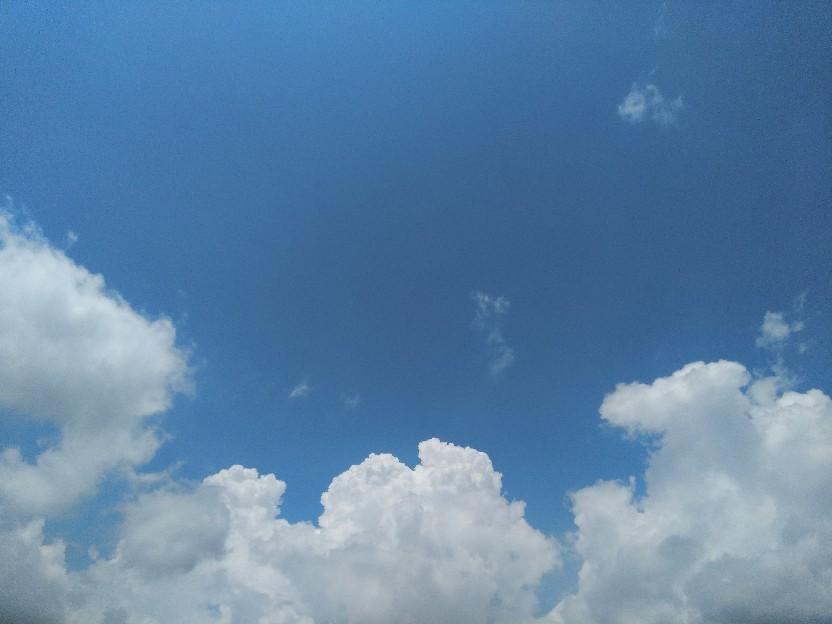暑い。_f0098671_20272798.jpg