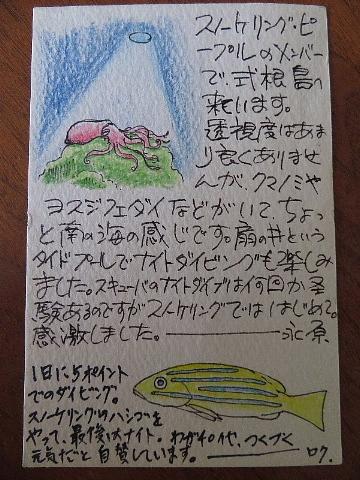 絵手紙には心の弾みを描く。_b0141773_22571554.jpg