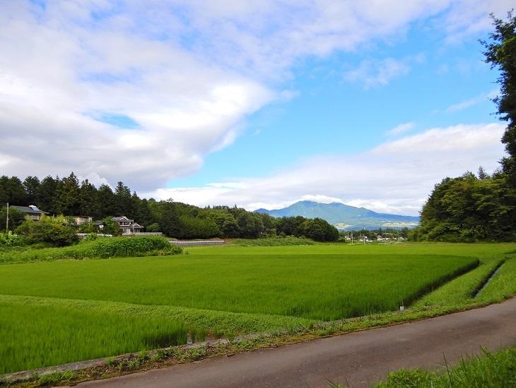 長坂町Yさん邸の現場より 1_a0211886_15172376.jpg