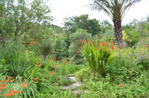 「モネの庭20周年に向けて」と「光の庭」工事の様子_e0135518_17171551.jpg