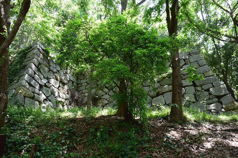 築城400周年の明石城を歩く。 その4 <稲荷郭>_e0158128_18162618.jpg