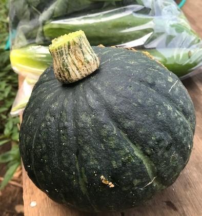 マクワウリ・カボチャ収穫、芋つる返し、葱土寄せ7・29~31_c0014967_11571904.jpg