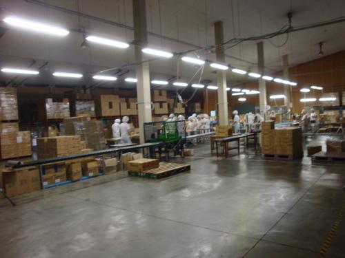食品工場で職場体験実習をやりました、暑い中頑張りました!!_c0204368_15521125.jpg