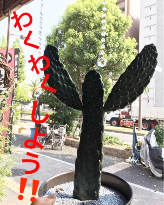 f0152875_20060716.jpg