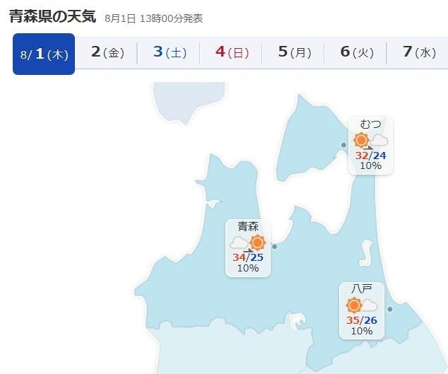 猛暑!冷風機&エアコンのダブル使用、外には出たくない_d0061678_14081196.jpg