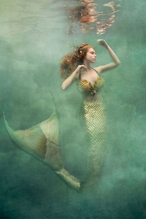 写真:Cheryl Walshの人魚_c0084183_10521496.jpg