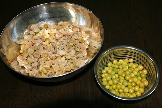 高槻の家庭菜園で収穫した「食用鬼灯」でパウンドケーキ~♬_f0229190_16565435.jpg