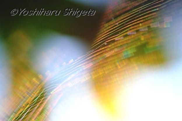 〜Rainbow〜_c0152400_22574397.jpg
