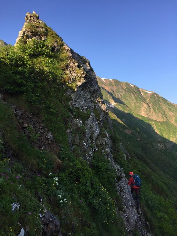 """2019年7月『天空が友達 -北アルプス後立山連峰縦走-』July 2019 \""""On the Skyline, Trekking of North Japan Alps\""""_c0219616_11355019.jpg"""