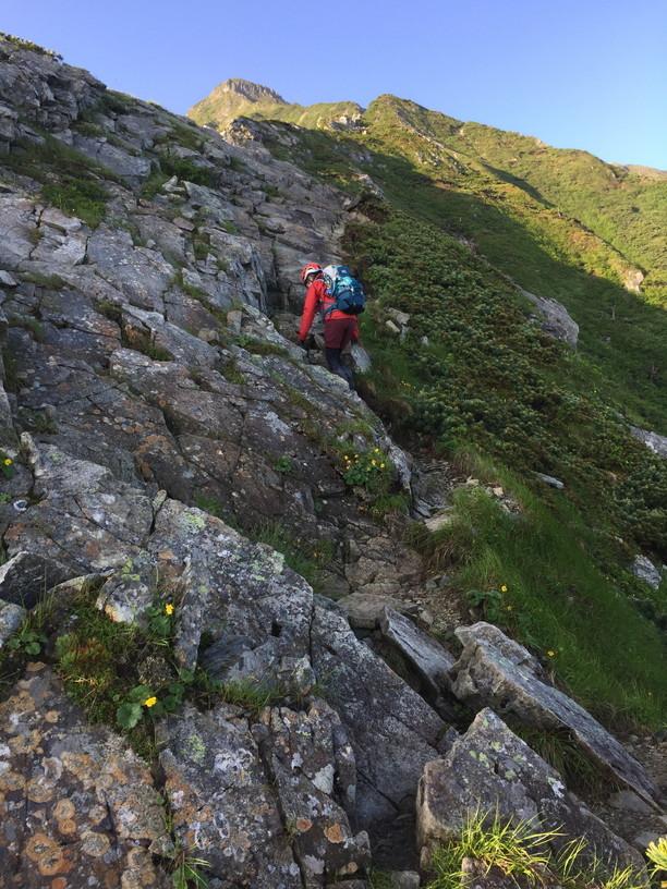 """2019年7月『天空が友達 -北アルプス後立山連峰縦走-』July 2019 \""""On the Skyline, Trekking of North Japan Alps\""""_c0219616_11355135.jpg"""