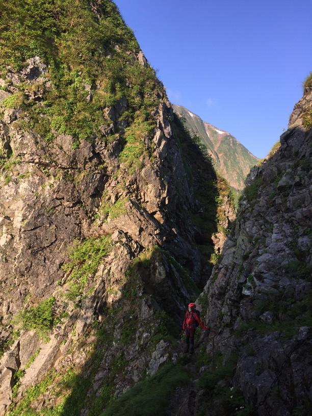 """2019年7月『天空が友達 -北アルプス後立山連峰縦走-』July 2019 \""""On the Skyline, Trekking of North Japan Alps\""""_c0219616_11355166.jpg"""