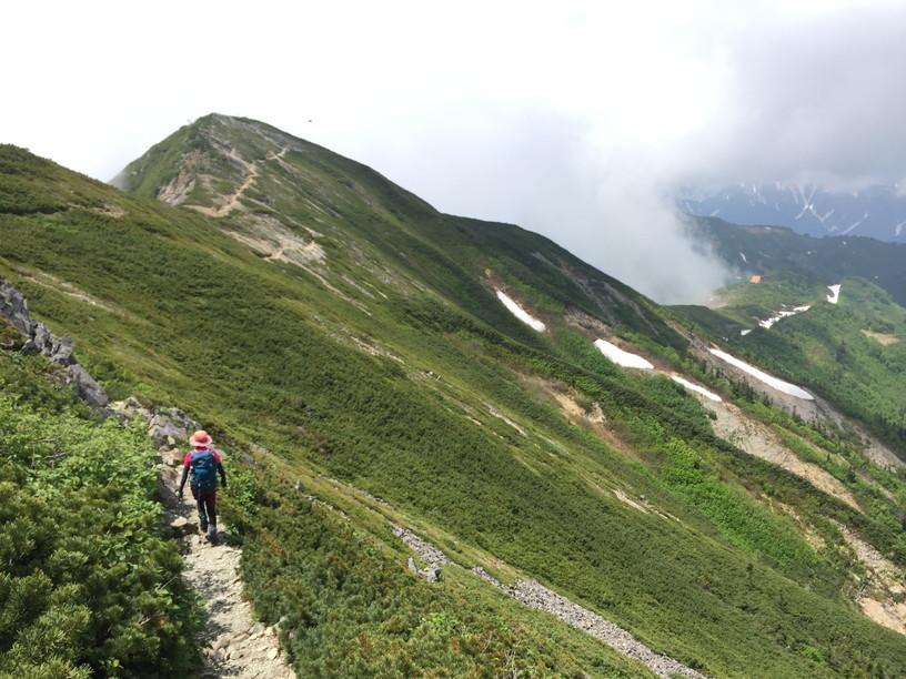 """2019年7月『天空が友達 -北アルプス後立山連峰縦走-』July 2019 \""""On the Skyline, Trekking of North Japan Alps\""""_c0219616_11464404.jpg"""