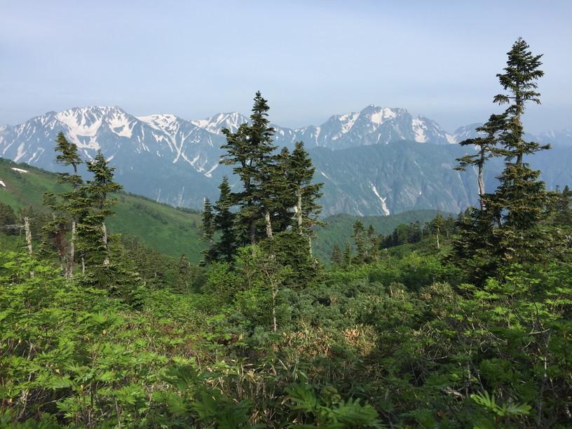 """2019年7月『天空が友達 -北アルプス後立山連峰縦走-』July 2019 \""""On the Skyline, Trekking of North Japan Alps\""""_c0219616_12032161.jpg"""