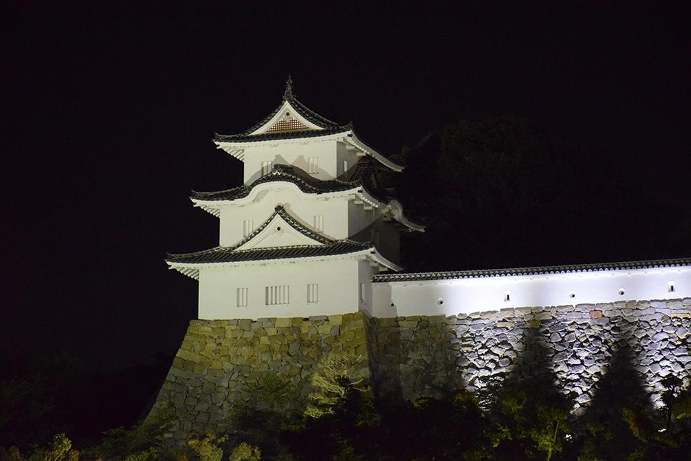 築城400周年の明石城を歩く。 その10 <ライトアップ>_e0158128_14434683.jpg