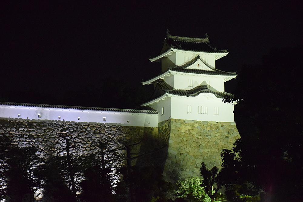 築城400周年の明石城を歩く。 その10 <ライトアップ>_e0158128_14434969.jpg