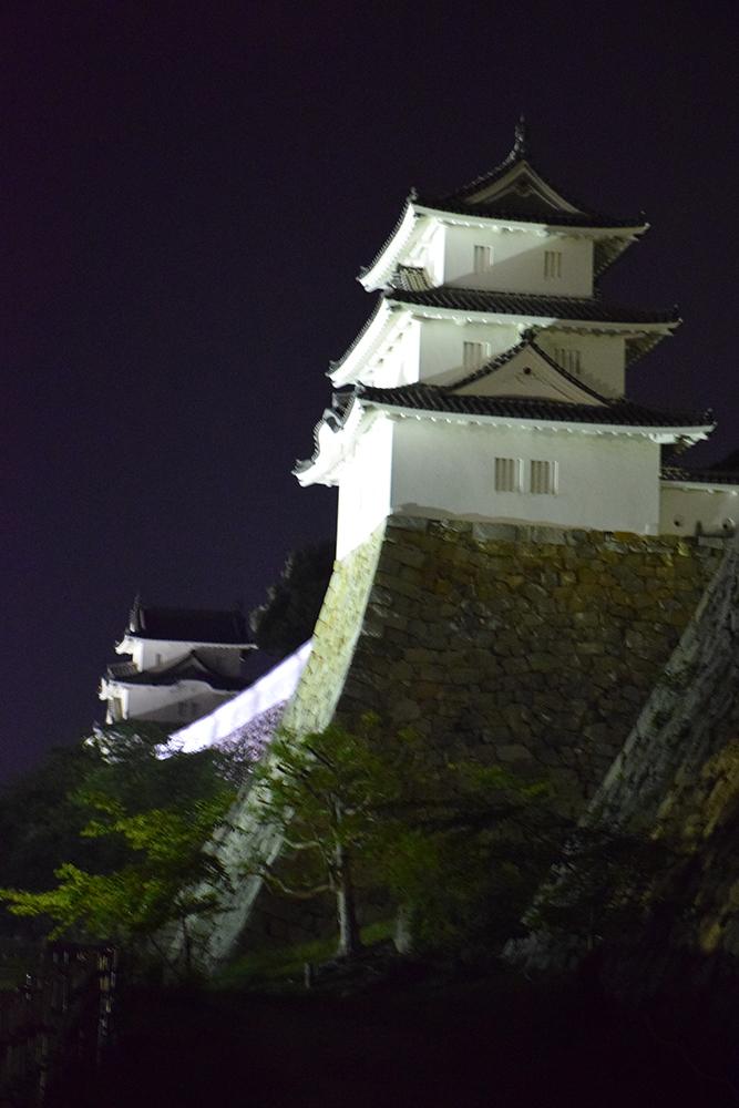 築城400周年の明石城を歩く。 その10 <ライトアップ>_e0158128_14450541.jpg
