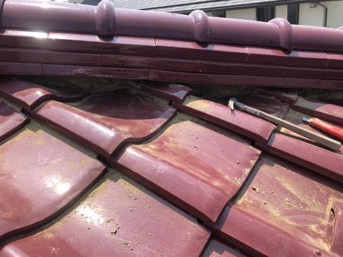 甲斐市 マロンの屋根 其の一_b0242734_20343883.jpeg