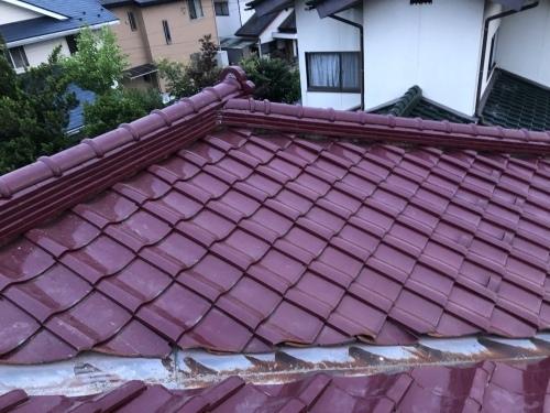 甲斐市 マロンの屋根 其の一_b0242734_20350291.jpeg